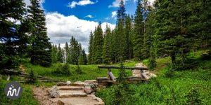 chemin avec des marches dans un paysage vert