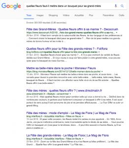 Illustration résultat de recherche Google pour illustrer SEO blog