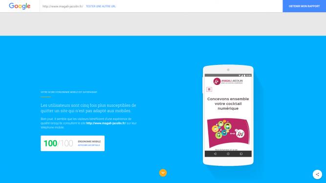 Score sur l'ergonomie sur mobile pour un site internet